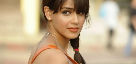Genelia D'Souza Bio, Height, Weight, Age, Family, Boyfriend And Facts - genelia dsouza hd image 520x245